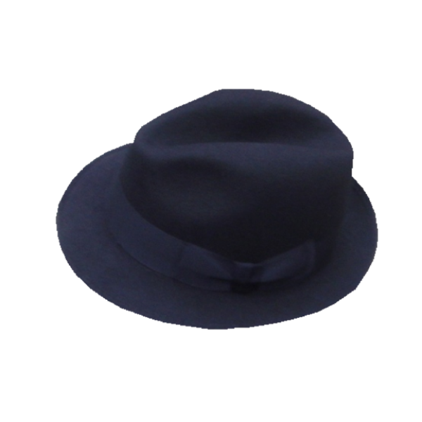Blue's Brothers Hat - Navy